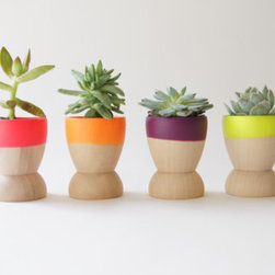 Mini Planters, Neon by Wind & Willow Home, Set of 4 - Start your day with these cheerful egg cups. They look great planted with mini succulents, but I'd rather use them for a colorful breakfast setting.