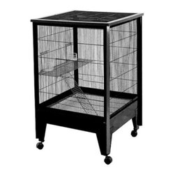 A and E Cage Co. - A&E Cage Co. 2 Level Small Animal Cage - SA2727SBLACK - Shop for Small Pet Habitats from Hayneedle.com! The 2 Level Small Animal Cage is the perfect housing environment for a variety of small animals such as rats sugar gliders chinchillas and ferrets. This cage features one large slide-up door for easy access two slide-up feeder doors a slotted ladder for lots of playtime and a large play area. The slide out tray and grate make cleaning easy and the casters make mobility a snap. This two level small animal cage is made of welded steel bar construction with .5-inch bar spacing. It has a durable powder coat finish that comes in a variety of color options.About A&E CageThis bird cage is designed and manufactured by A&E Cage Co. LLC. The company is a family-owned and family-operated birdcage company with over 30 years experience in the pet industry. Based in Burlington N.J. A&E Cage offers a wide selection of aviaries bird carriers and bird toys and numerous styles of bird cages to keep your pet birds happy and healthy.