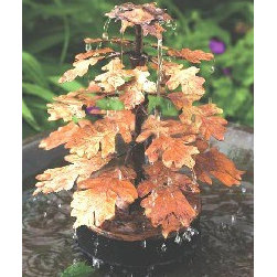 Ancient Graffiti - Oak Leaf Solid Copper Dripper - Oak Leaf Dripper Fountain Solid Copper KD. Attractively Gift Boxed. Includes pump, attracts birds. Hand-crafted.