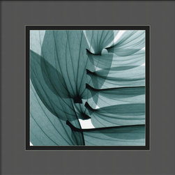 "Amanti Art - ""Lily Leaves"" Framed Print by Steven N. Meyers - Plants and flowers are unique and beautiful in their own right. But when they are shown in a ""negative"" light, as in photographic negative, they reveal another layer of beauty. Add this art to your wall as a conversation piece and something lovely to gaze upon."