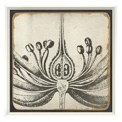 The Artwork Factory - Vintage Flower I Framed Artwork - Ready-to-Hang, 100% Made in the USA, museum quality framed artwork