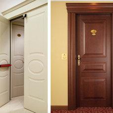 Contemporary Interior Doors by Dream Design Mavens