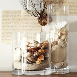 Beach Shell Vase Filler - Preserve summer memories of soft sand under your feet with a tabletop display of shells collected during a vacation.