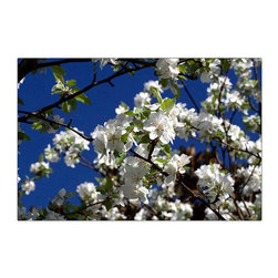 Trademark Art - Floral Tree by Cary Hahn Color Photography Pr - Choose size: 18 in. x 24 in.Giclee Canvas Art. Ready to Hang. Artist: Cary Hahn. Title: Floral Tree. 18 in. L x 24 in. W x 1.5 in. D. 35 in. W x 47 in. L x 1.5 in. DPhotography Giclee (jee-clay) is an advanced print making process for creating high quality fine art reproductions. The attainable excellence that Giclee printmaking affords makes the reproduction virtually indistinguishable from the original artwork. The result is wide acceptance of Giclee by galleries, museums, and private collectors.