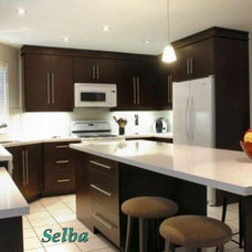Google Image Result for http://www.selba.ca/productgallery/images/large/AUT_0037