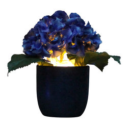 The Firefly Garden - Endless Summer - Illuminated Floral Design, Blue Hydrangea, Blue Ceramic - Celebrate the long warm days and sultry nights of summer with the bounty of traditional blue or light green Hydrangeas softly illuminated from within. Endless Summer offers a choice of planter pots, whether you're seeking a rustic or more contemporary accent for the home or office.
