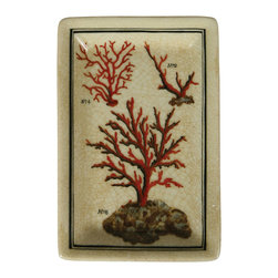 Tidepool Porcelain Rectangular Tray - Coral - A tray that works as beautifully in the library as on the sideboard is a prize for home decor, and the Tidepool Porcelain Rectangular Tray fuses trends for naturalists' illustrations, oceanic specimens, and antiqued colors and finishes with a rich palette of red and cream. The Coral design presents a trio of branching reef examples, each numbered with a hand-written label.