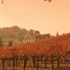 Silver Oak Cellars Winery and Vineyard, Alexander Valley, Mendocino County, Cali