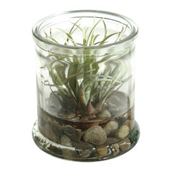 """D&W Silks - Artificial Easter Grass in Candle Jar - It's amazing how much adding a plant can change the look of a room or decor, but it can be difficult if your space is not conducive to growing plants, or if you weren't exactly born with a """"green thumb."""" Invite the beauty of nature into your home without all the upkeep with this maintenance-free, allergy-free arrangement of artificial Easter grass in a candle jar. This is not a living plant."""
