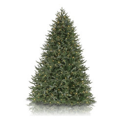 Balsam Hill - 5.5' BH Fraser Fir Artificial Christmas Tree - LED Clear Easy Plug - Majestic and elegant, the 5.5 feet BH Fraser Fir showcases real-looking green foliage with silver undertones. Draped with LED clear lights, this artificial Christmas tree instantly brightens up rooms with its gorgeous design. Balsam Hill�s mission is to create the world�s most beautiful and realistic artificial Christmas trees.� We are committed to providing our customers with a picture-perfect holiday.� With innovations like hinged branches and options like remote-controlled pre-strung lights, our luxurious trees will let you sit back and enjoy Christmas to the fullest, this year and for years to come.� Our trees are designed using branches from real trees, and our exclusive True Needle technology creates the most realistic looking and feeling branch tips.� You and your guests may not believe that your gorgeous Balsam Hill Christmas tree is artificial. Balsam Hill�s trees have won awards for their realism and have been featured in movies, television shows, and celebrity homes.� Our wide range of styles and sizes ensures you will be able to find a tree that fits perfectly in your home.� We also have a range of beautiful wreaths and garlands to put the finishing touches on your home this holiday season.