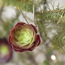 by Flora Grubb Gardens