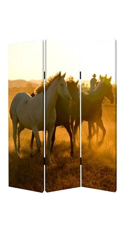 Screen Gems - Screen Gems Round Up Screen - This is a 3 panel screen printed on canvas. The screen is two sided with different and complementary images on each side. It is light weight and very easy to move. The screen also has inspirational wall decor applications.