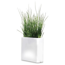 Modern Indoor Pots And Planters by Design Within Reach