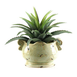 D&W Silks - D&W Silks Star Plant Succulent in Oblong Ceramic Planter - This life-like star succulent piece, seen here in an antique reproduction planter, brings a natural touch of greenery to any home or office. Great for any end table or shelf, you will be able to enjoy the look of a real, living plant without the hassle of caring for it. Simply dust occasionally for this plant to maintain it's color and shape for years to come.