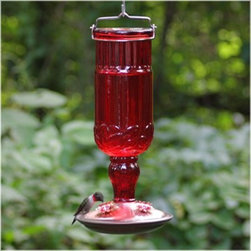 Perky Pet 24 oz. Red Antique Bottle Hummingbird Feeder - If the sweet nectar that lay inside the Perky Pet 24 oz. Red Antique Bottle Hummingbird Feeder doesn't attract your feathered friends, then the vibrant red antique glass with pewter accents surely will. This old-school designed hummingbird feeder will be a standout addition to your backyard, and will be a joy to watch as the little bundles of energy float and eat. It holds 16 ounces of nectar and features four decorative red flower feeding ports surrounding its base.About Woodstream Corp With more than 150 years of experience, Woodstream Corp is privately-held company and a leading manufacturer of quality-branded products for pets and wildlife, natural solutions for lawns and gardens, wild bird feeding products, and outdoor living decor. Woodstream's growth has been fueled by a consumer-driven approach to product development, focusing on innovation, quality, safety, and a commitment to an industry-leading level of service to retailers and consumers. For example, a key focus for Woodstream Corp. has been to add organic and/or environmentally friendly products. It has taken a pro-active approach to preserve our environment and wild animals. About Birdfeeders.com Whether you're an experienced hobbyist or an amateur bird watcher, there is a feeder to fit your style at Birdfeeders.com, where you will find a substantial selection of quality bird feeding products at competitive prices. If you love watching birds in your backyard and want to attract more, visit Birdfeeders.com for helpful bird watching and bird feeding advice. You can access the company's popular bird library for additional information about specific birds, and then browse its collection of quality bird feeders, feeder accessories, bird baths, and bird houses.