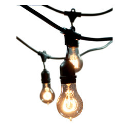Outdoor String Lights - 48' Outdoor String Light Kit with included Nostalgic Victorian Bulbs