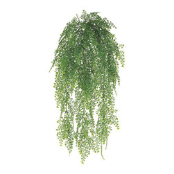 Silk Plants Direct - Silk Plants Direct Maidenhair Fern Hanging Bush (Pack of 12) - Silk Plants Direct specializes in manufacturing, design and supply of the most life-like, premium quality artificial plants, trees, flowers, arrangements, topiaries and containers for home, office and commercial use. Our Maidenhair Fern Hanging Bush includes the following: