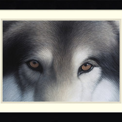 "Amanti Art - ""Eyes of the Hunter: Gray Wolf"" Framed Print by Charles Alexander - Charles Alexander's hypnotizing portrait is beautiful right down to the finest detail. You may want to place it somewhere where it won't intimidate your guests while they eat."