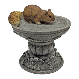 Design Toscano - Design Toscano Hunter the Woodland Squirrel Statue - QM231341 - Shop for Garden Bird Baths from Hayneedle.com! About Design Toscano:Design Toscano is the country's premier source for statues and other historical and antique replicas which are available through the company's catalog and website. Design Toscano's founders Michael and Marilyn Stopka created Design Toscano in 1990. While on a trip to Paris the Stopkas first saw the marvelous carvings of gargoyles and water spouts at the Notre Dame Cathedral. Inspired by the beauty and mystery of these pieces they decided to introduce the world of medieval gargoyles to America in 1993. On a later trip to Albi France the Stopkas had the pleasure of being exposed to the world of Jacquard tapestries that they added quickly to the growing catalog. Since then the company's product line has grown to include Egyptian Medieval and other period pieces that are now among the current favorites of Design Toscano customers along with an extensive collection of garden fountains statuary authentic canvas replicas of oil painting masterpieces and other antique art reproductions. At Design Toscano attention to detail is important. Travel directly to the source for all historical replicas ensures brilliant design.