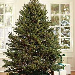 Fresh Blue Ridge Mountain Christmas Tree - If you have the space, why not set up a Christmas tree in the dining room? Christmas dinner will never be the same without it!