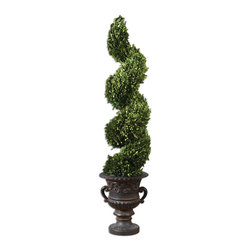 Uttermost - Spiral Topiary Preserved Boxwood - Uttermost Spiral Topiary Preserved Boxwood