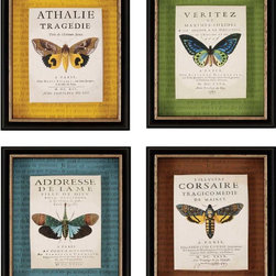 Paragon Decor - Botanical Butterfly Set of 4 Artwork - Butterfly prints are boxed and mounted onto four different colored backgrounds.