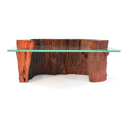 Coffee tables - Open Hollow Trunk Coffee Table - With Top Detail