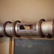 Fancy - Cat Tube Transportation System
