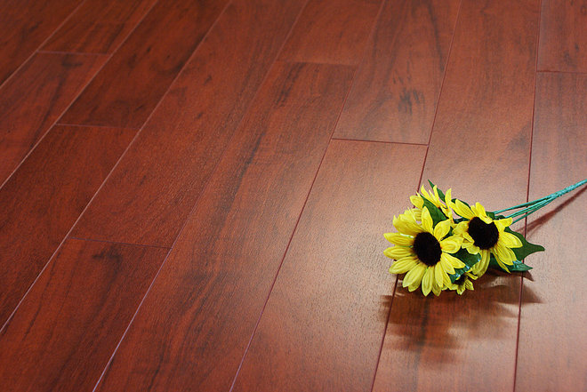 Tropical Laminate Flooring by Masters Building Products