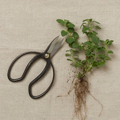 Traditional Pruning Tools by Terrain