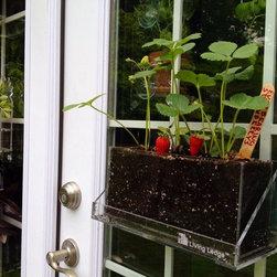 Living Ledge™ Specialty Vertical Garden Container - Christina Rex, Rex Design Concepts, LLC