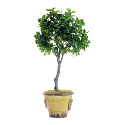Winward Designs - Italian Ficus Topiary In Urn Flower Arrangement - The elegant ficus tree is beautiful, but notoriously temperamental. With a permanent silk version, you get the classic look without the fuss of weekly maintenance. It's a smart and chic choice for any room in your home.