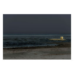 """Private Island, Limited Edition, Photograph - """"One image from my portfolio """"""""Doomed by Nature"""""""", about my view of the current state of the Salton Sea."""""""
