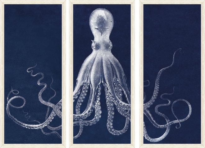 Modern Artwork by Natural Curiosities
