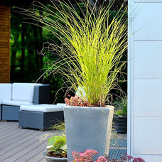 Contemporary Patio by Sallie Hill Design