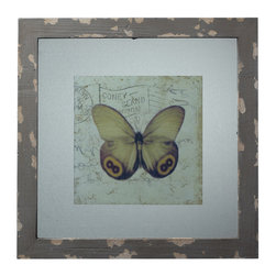 Sterling Industries - Sterling Industries 128-1028 Distressed Grey Picture Frame w/ Butterfly Print - Picture Frame (1)