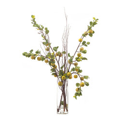 John Richard - John Richard Apple Branches JRB-3051W - Apples are another favorite with a simple but bold look in a glass cube cylinder vase with tall natural branches.