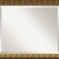 Amanti Art - 'Solare Wall Mirror - Medium' 23 x 19-inch - A golden color with acid wash highlights, this frame is accented by a raised floral design and warm patina.