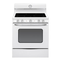"""GE Artistry Series 30"""" Free-Standing Electric Range (model # ABS45DFWS) - Features:"""