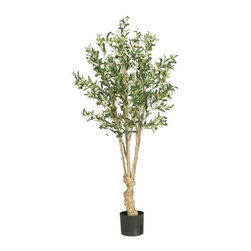 Nearly Natural - 5' Olive Silk Tree - Not for outdoor use. Incredibly natural looking trunk. At 5 feet tall creates a dramatic impression. Adorned with over thirteen-hundred leaves and olives. Included container size: 7 in. W X 6 in. H30 in. W X 30 in. D X 5ft. H (16lbs). Adorn your home or office space in classic Mediterranean style with this traditional olive tree. A symbol of peace, wisdom, and abundance, this elegant creation is a welcome addition to any room. Standing 5 feet high, this everlasting beauty contains over thirteen-hundred rich green leaves and eighty-six brightly hued olives. A robust twisting trunk flocked with long slender branches and lush foliage projects an all natural appearance that's pleasing to the eye.