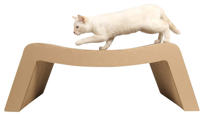 contemporary pet care by Design Public