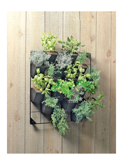 contemporary outdoor planters by Gardener's Supply Company