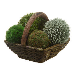 "Silk Plants Direct - Silk Plants Direct Baby's Tear, Moss and Eucalyptus Seed Ball (Pack of 1)"" - Silk Plants Direct specializes in manufacturing, design and supply of the most life-like, premium quality artificial plants, trees, flowers, arrangements, topiaries and containers for home, office and commercial use. Our Baby's Tear, Moss and Eucalyptus Seed Ball includes the following:"