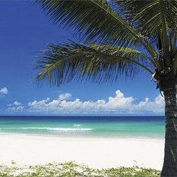 Hawaiian Bedroom -