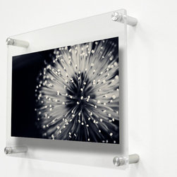 "Wexel Art - 1210D Double Panel Acrylic Wall Frame 12x10 - Get the floating effect while fully enclosing your art between two panels of acrylic. No magnets needed. When you want to change out your display, just unscrew the caps on the hardware and lift off the top panel of acrylic. This frame is ideal for displaying 8x10"" or 5x7"" photos or smaller."