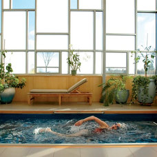 Contemporary Hot Tub And Pool Supplies by Endless Pools