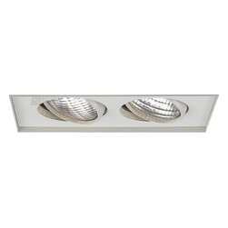 W.A.C. Lighting - W.A.C. Lighting MT-236TL-WT Double Light Low Voltage Multi Spot Invisible Trim f - Rectangle two light gimbal ring style adjustable recessed fixture, available with trim or Invisible Trim™, designed to sit flush with the ceiling for a clean, architectural look. Housing and trim ordered separately