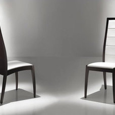 Modern Dining Chairs by sanasurbandesign.com