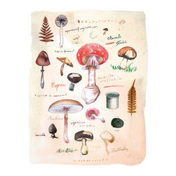 Mushroom Poster by Lucile's Kitchen - I love that this print looks as if it were pulled from a treasured, old botanical identification text. The artist mixed antique engravings with her own original watercolors, gouache and ink illustrations.