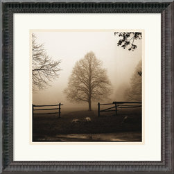 Amanti Art - Morning Texture Framed Print by Harold Silverman - See what you miss when you sleep in? Or live in the city? Harold Silverman has captured a beautiful early morning moment in the country, which is delivered to you framed and ready to hang.